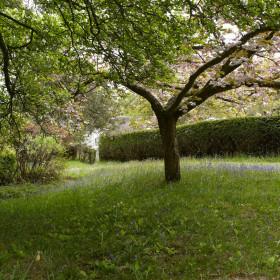Pool, Tennis, Gardens & Grounds