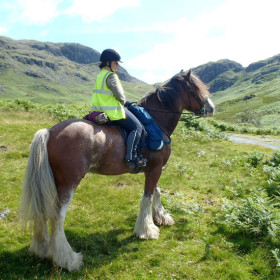Peaks, pony treks and pottering about on the Lakes